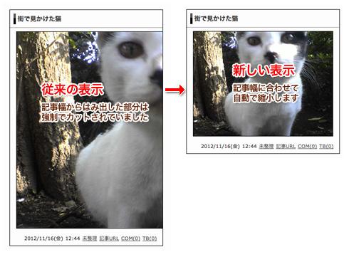 画像自動リサイズの説明