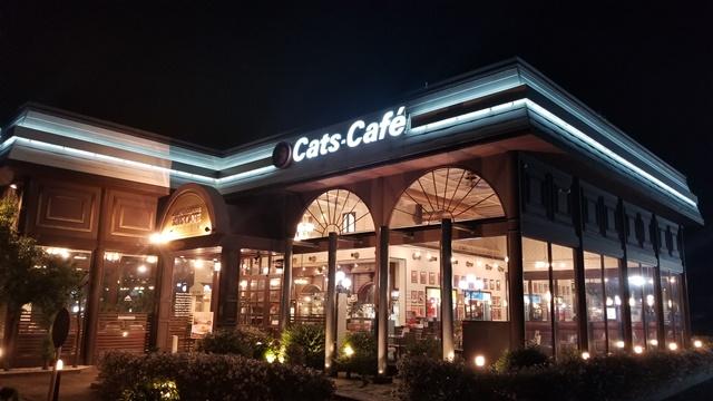 キャッツカフェ