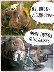 16-04-10-12-36-25-767_deco.jpg