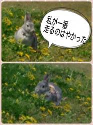 16-04-17-16-34-18-194_deco.jpg