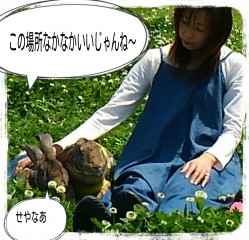 16-05-01-12-48-46-641_deco.jpg