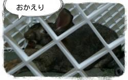 16-06-02-21-24-47-343_deco.jpg