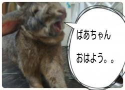 16-06-14-09-05-26-407_deco.jpg
