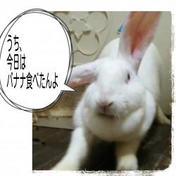16-07-12-04-54-40-914_deco.jpg