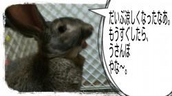 16-09-01-07-16-16-550_deco.jpg