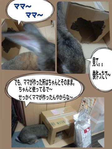 2014-08-29-20-58-04_deco.jpg