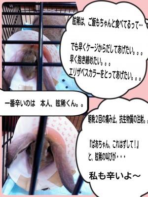 2014-09-10-20-35-46_deco.jpg
