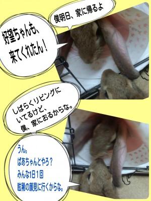 2014-09-13-22-20-57_deco.jpg