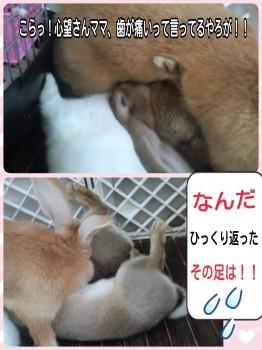 2014-09-17-18-21-01_deco.jpg