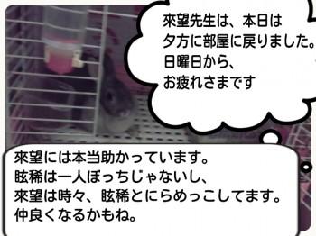 2014-09-17-18-36-58_deco.jpg