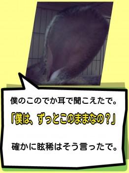 2014-09-21-18-44-32_deco.jpg
