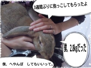 2014-09-28-11-44-27_deco.jpg