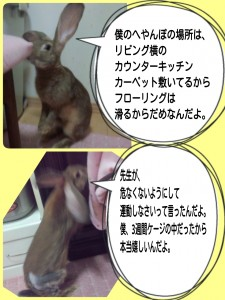 2014-09-28-22-30-43_deco.jpg