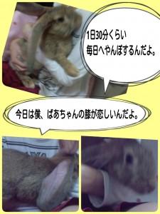 2014-09-28-22-35-37_deco.jpg