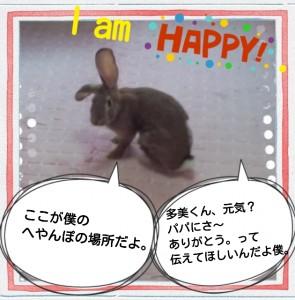 2014-09-29-10-07-47_deco.jpg