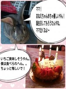 2015-01-04-06-39-21_deco.jpg