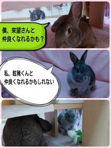 2015-01-04-21-23-03_deco.jpg
