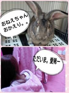 2015-01-10-10-53-35_deco.jpg
