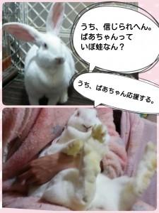 2015-03-04-18-47-38_deco.jpg
