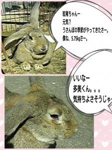 2015-03-13-06-46-02_deco.jpg