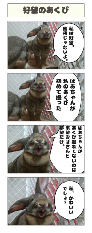 20160530-200914.png
