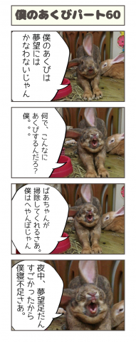 20160810-061226.png