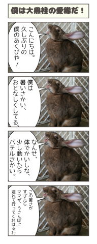 20160816-141614.png