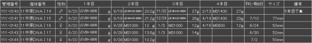 Y11中原04