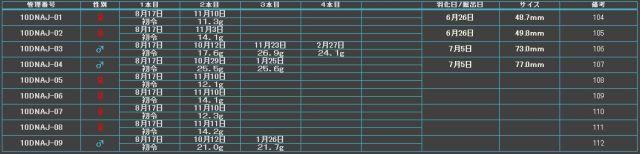 Y10中原07