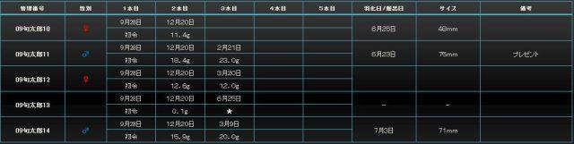 2008年旬太郎03
