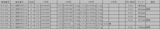R13-1能勢P8552