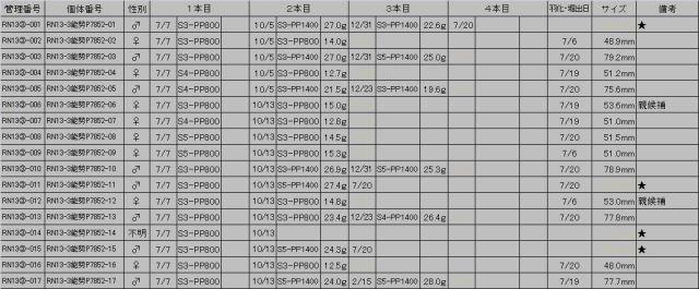 13③能勢P7852