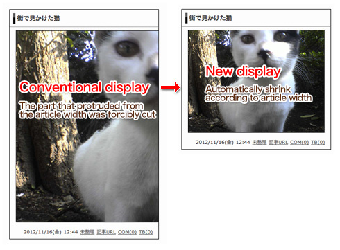 Description of automatic image resizing