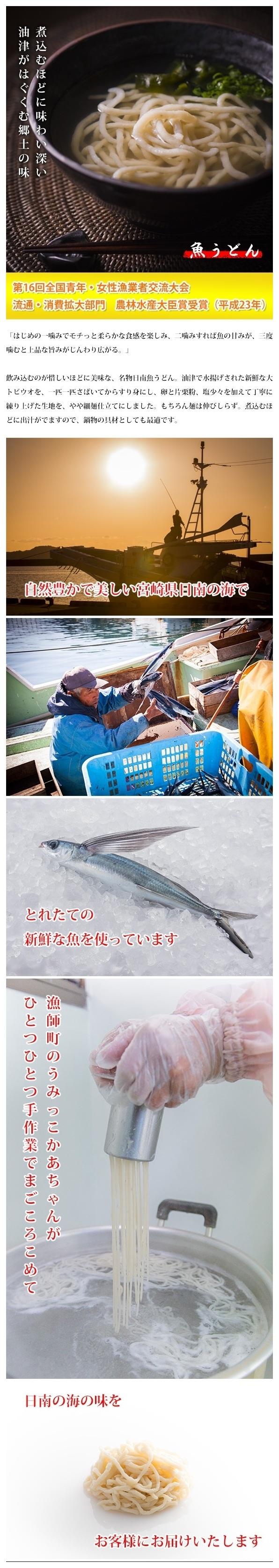 日南魚うどん