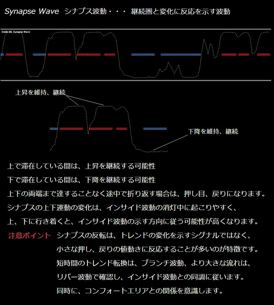 シナプス波動の説明