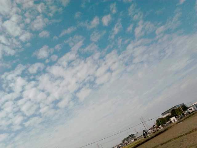K0050205_2016-11-04-00-29-16.jpg