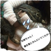 15-11-06-21-38-52-559_deco.jpg