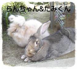 16-03-29-20-51-08-965_deco.jpg
