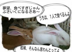 16-04-25-18-19-59-572_deco.jpg