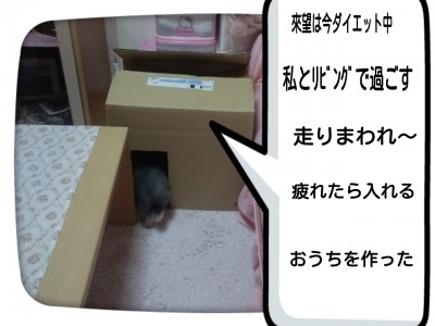2014-07-30-18-32-04_deco.jpg