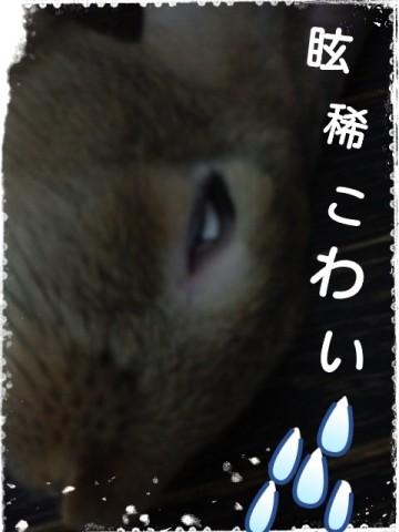 2014-08-29-20-24-00_deco.jpg
