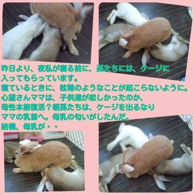 2014-09-09-15-23-37_deco.jpg