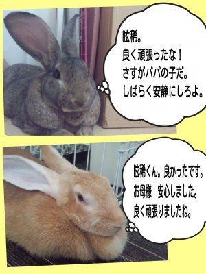 2014-09-09-16-51-22_deco.jpg