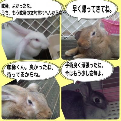 2014-09-09-16-59-09_deco.jpg