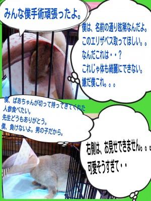 2014-09-09-20-25-50_deco.jpg