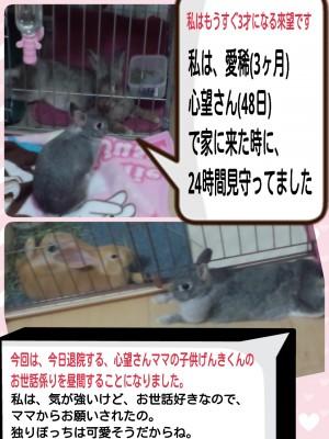 2014-09-14-07-31-16_deco.jpg