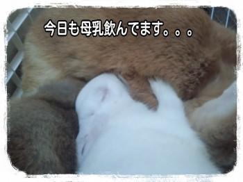 2014-09-19-17-37-44_deco.jpg