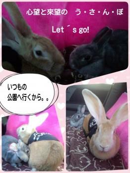 2014-10-06-18-03-01_deco.jpg