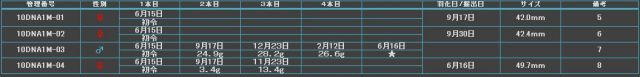 Y10中原03