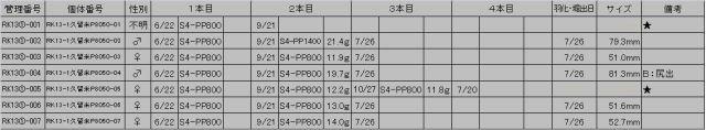 13①久留米P8050